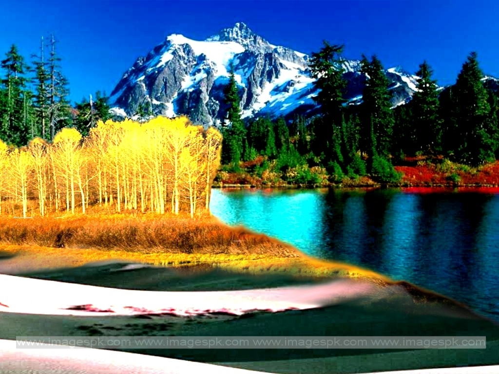 nature wallpaper related keywords - photo #2
