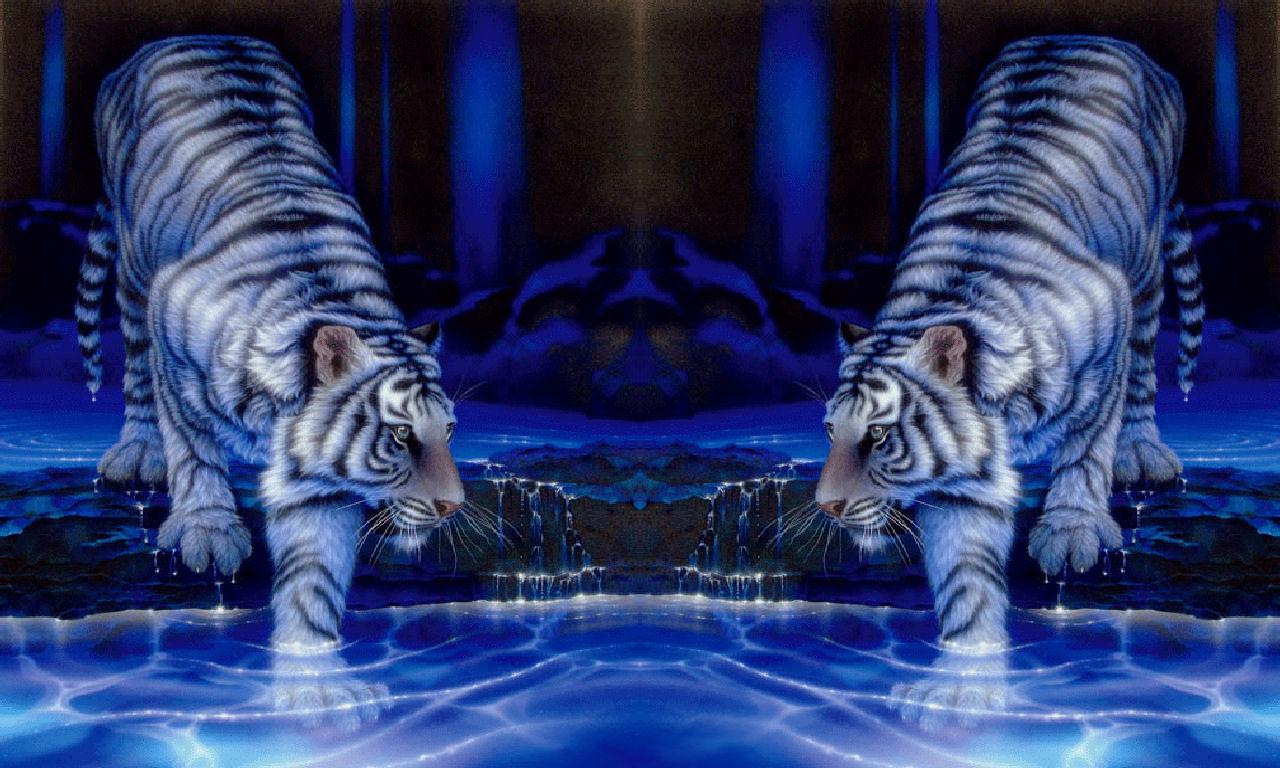 Clemson Tigers Desktop Wallpaper   wwwwallpapers in hdcom 1280x768
