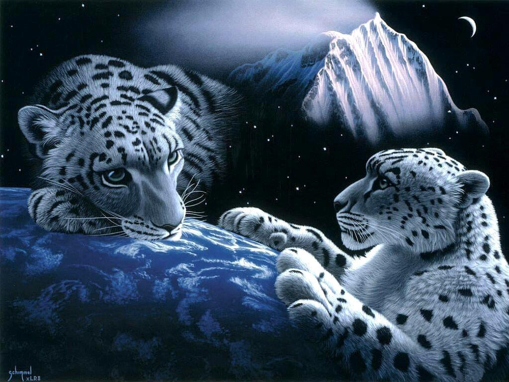 Fantasy Cheetah Images Wallpaper 1024x768 Full HD Wallpapers 1024x768
