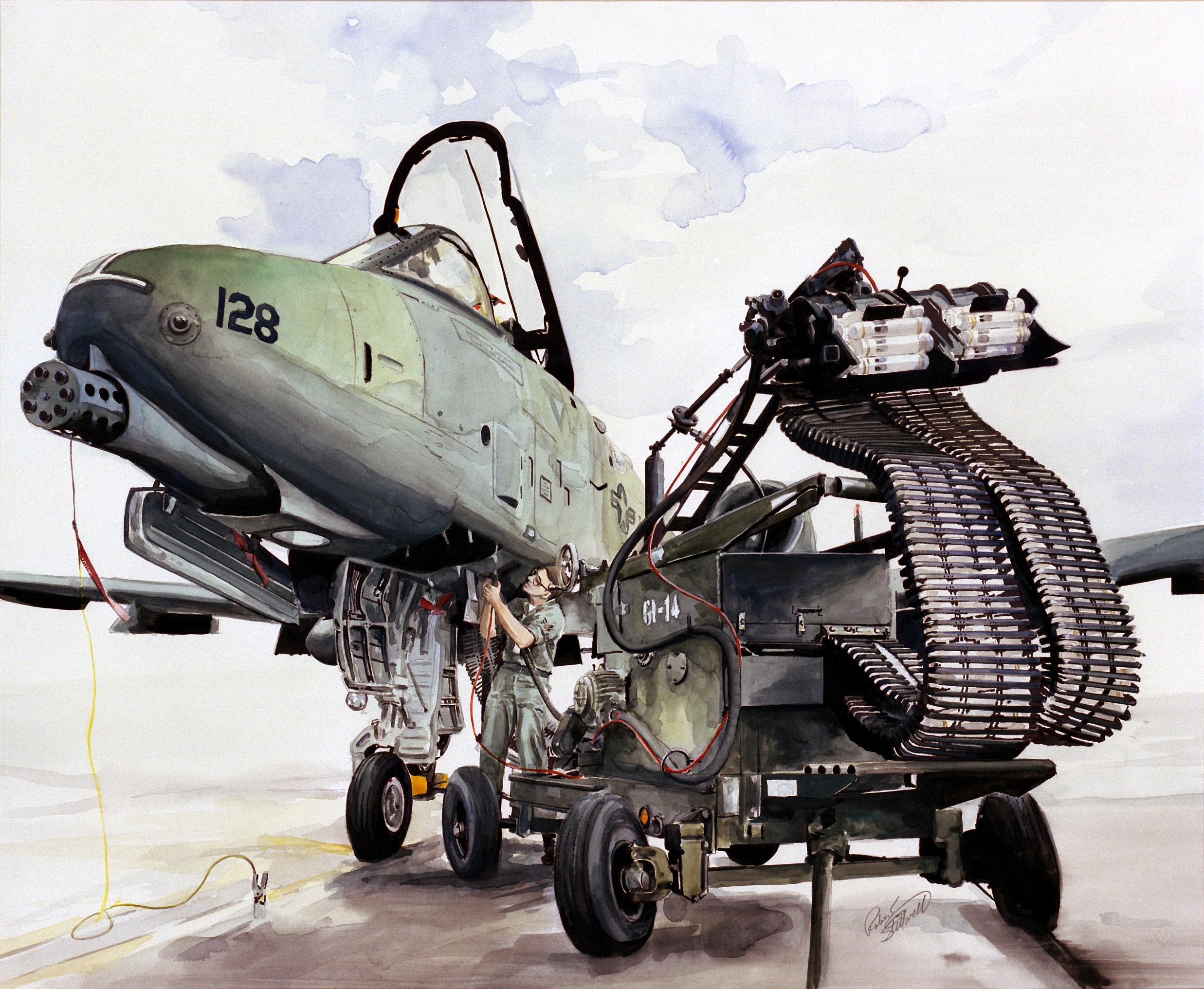 Fairchild Republic A 10 Thunderbolt II I n f o r m a t i o n 2 S h a 2474x2032