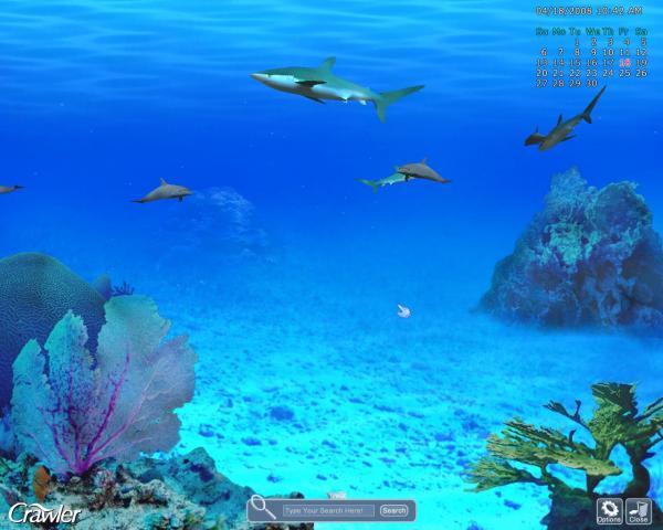 Crawler 3D Marine Aquarium Screensaver is also compatible with 600x480