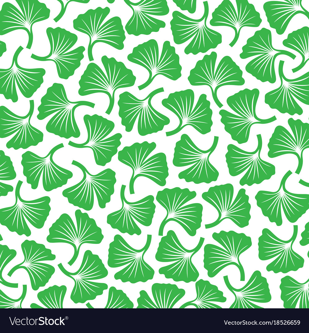 Background pattern with ginkgo biloba plants Vector Image 1000x1080