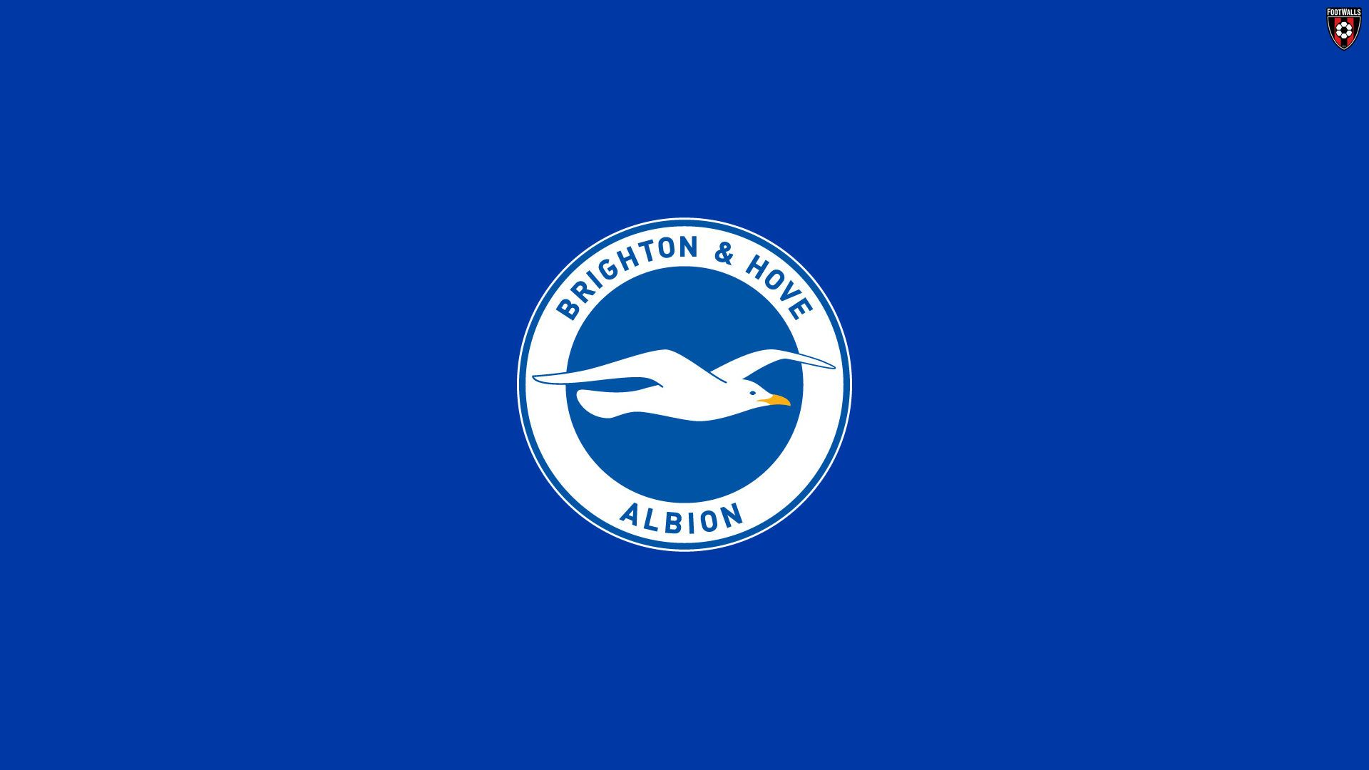 Brighton And Hove Albion Wallpaper 3   Football Wallpapers 1920x1080