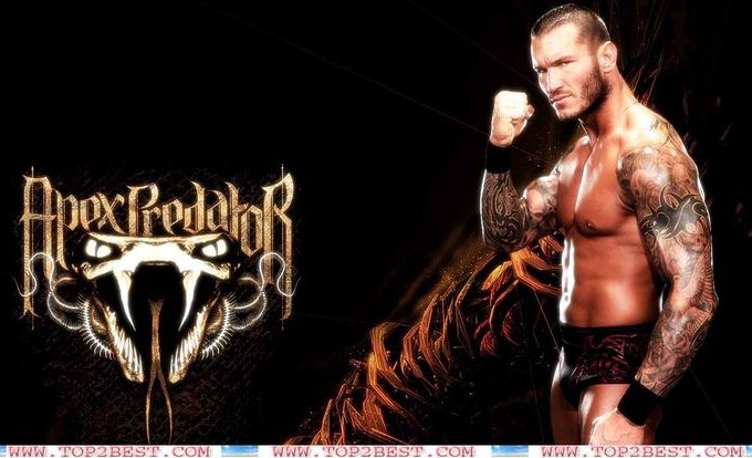 Wwe Randy Orton Wallpaper 2015 HD4Wallpapernet 680x414