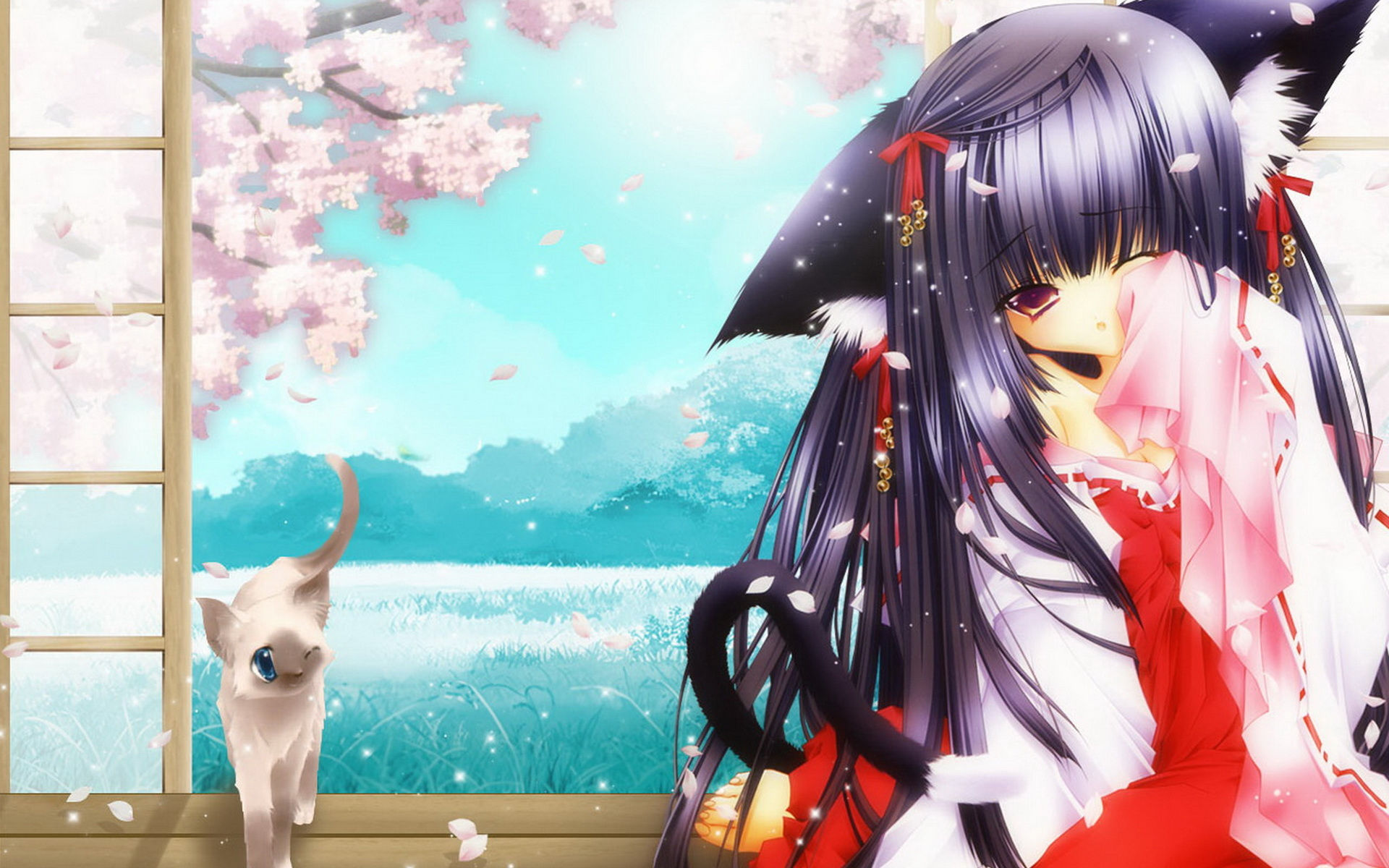 Anime Cat Girl Wallpapers Girl And Cat 1920x1200 1920x1200
