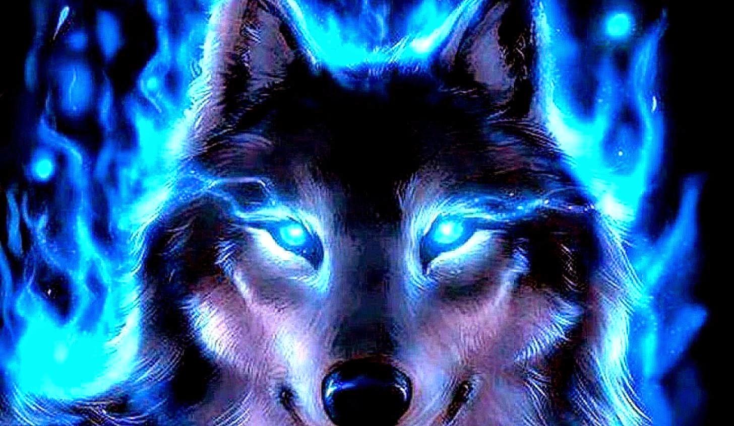 Best Wolf Wallpaper - WallpaperSafari