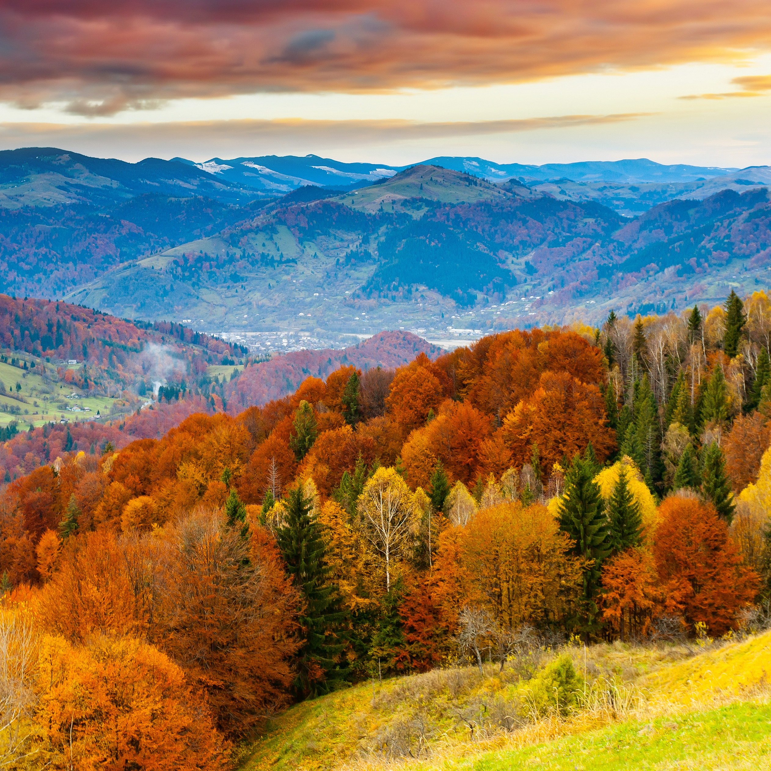 Colorful Fall Wallpapers Of The Week   Fall Trees Mountains 2524x2524