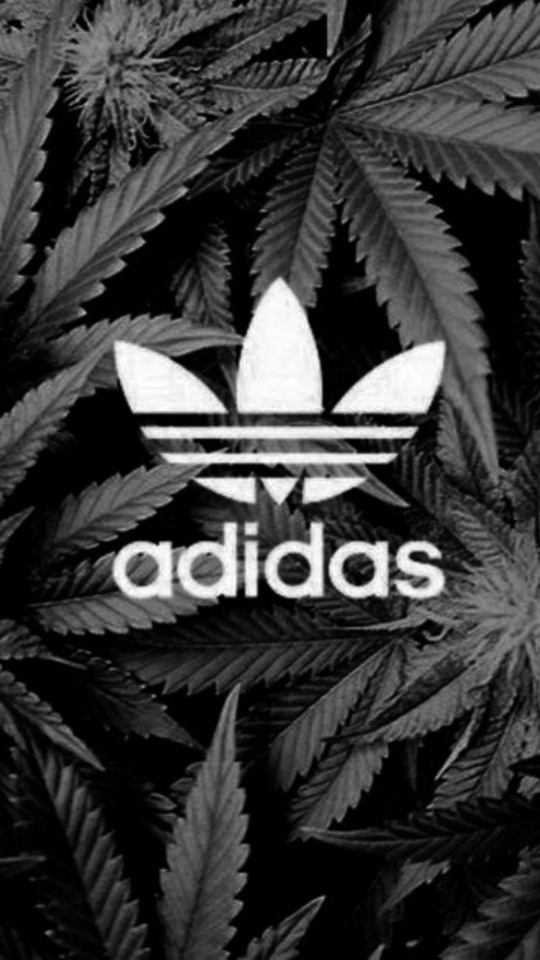 HUF iPhone Wallpapers   Top HUF iPhone Backgrounds 1080x1920