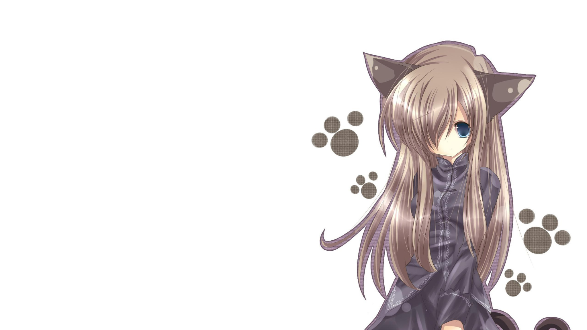 Free Download Download 2048x1152 Cat Girl Nekomimi Art Anime Girl