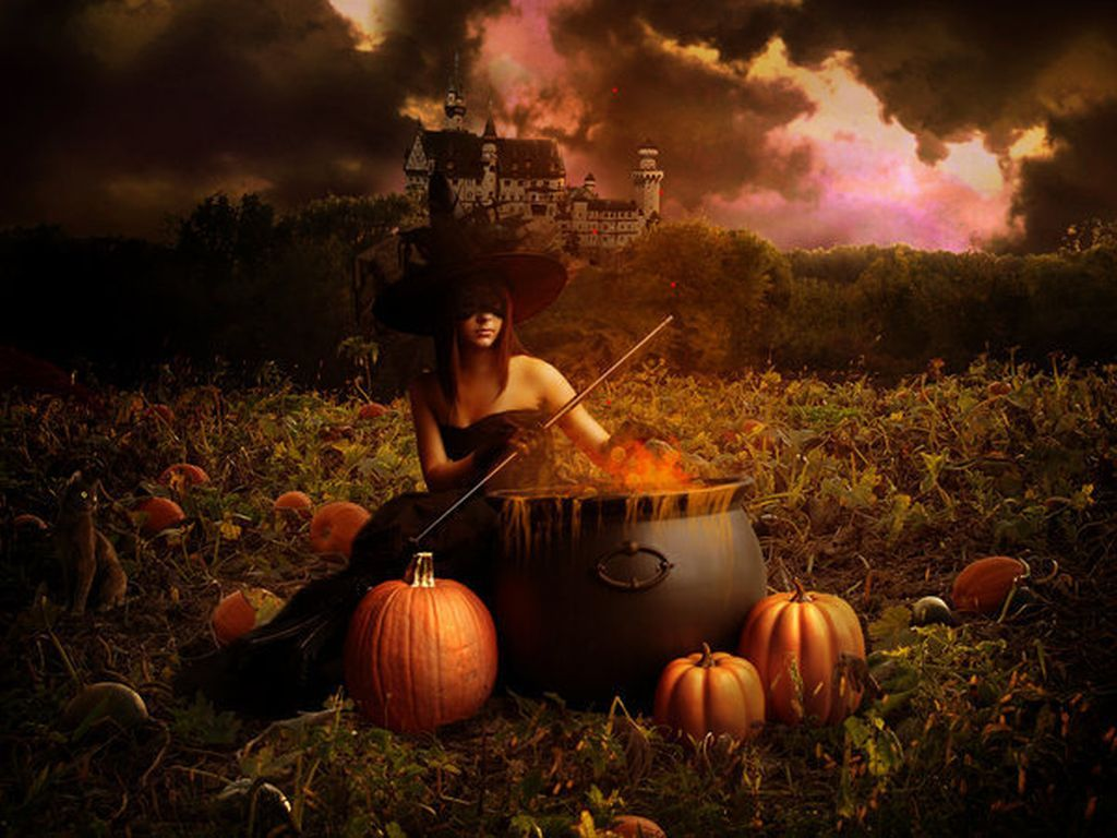 Halloween Witch Desktop Backgrounds Images amp Pictures   Becuo 1024x768