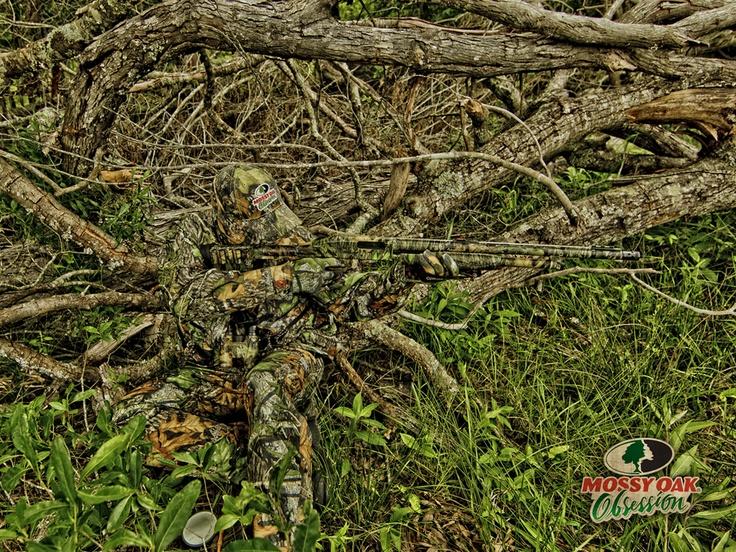 Pink Mossy Oak Desktop Backgrounds Mossy oak wallpaper for 736x552