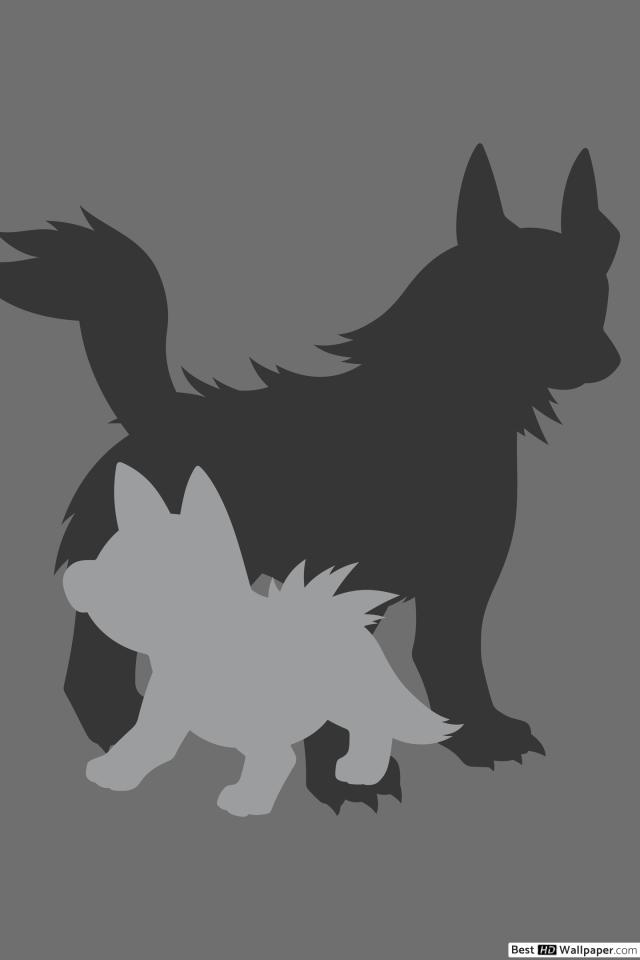 Mightyena and Poochyena of Pokemon HD wallpaper download 640x960