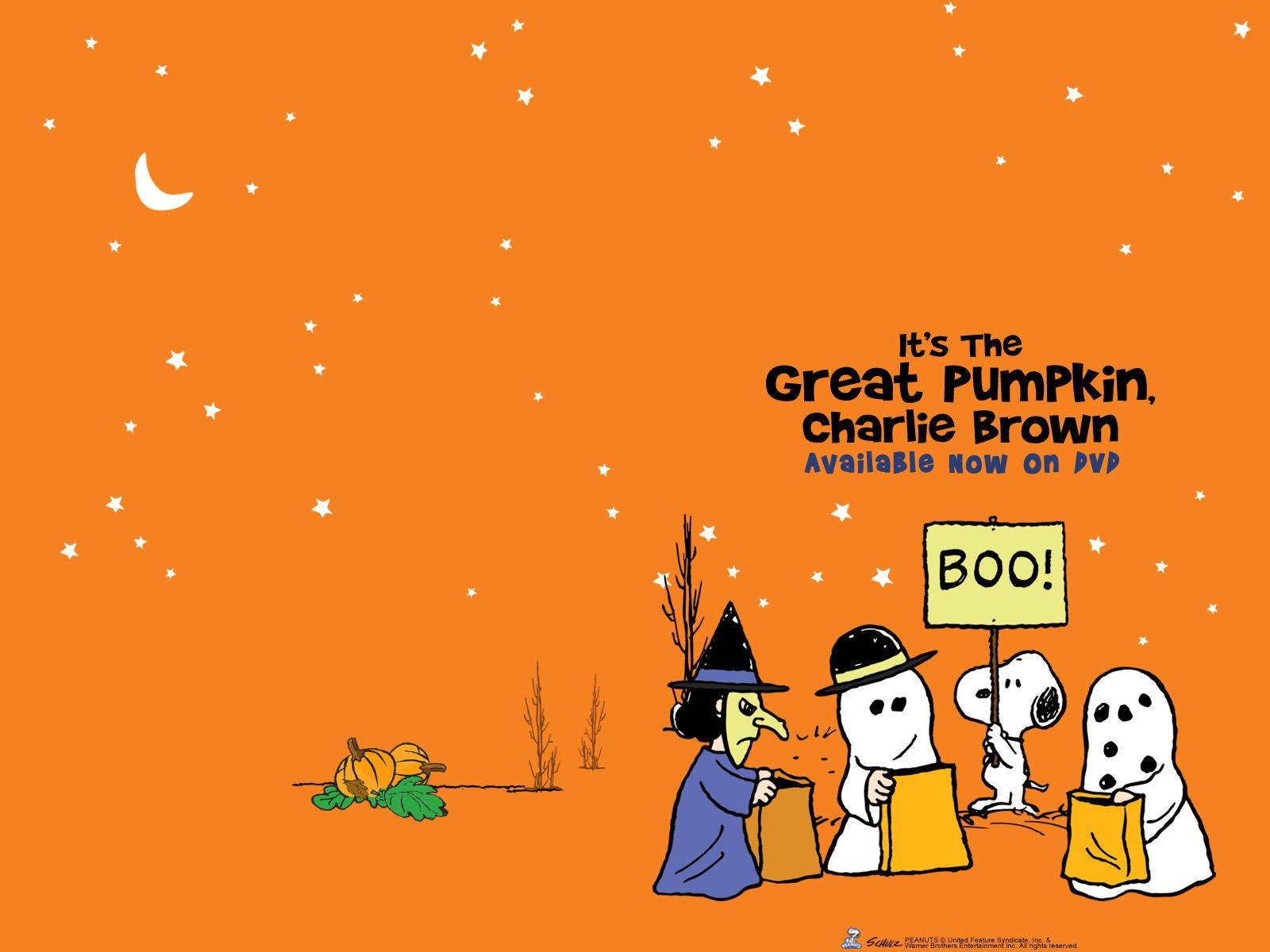 Charlie Brown Wallpaper 100 Full HDQ Charlie Brown 1600x1200