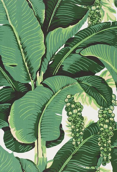 Back Gallery For banana leaf pattern wallpaper 400x588