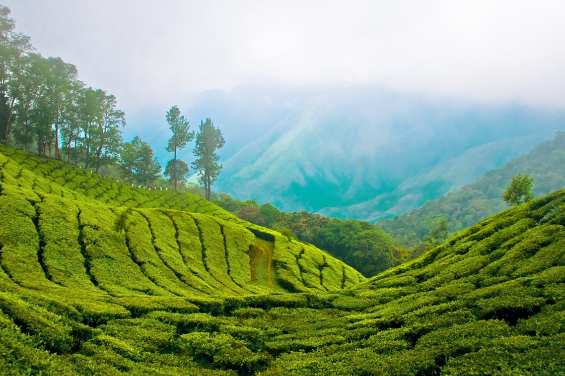 Kerala HD Wallpapers HD Wallpapers   Blog 1138x758