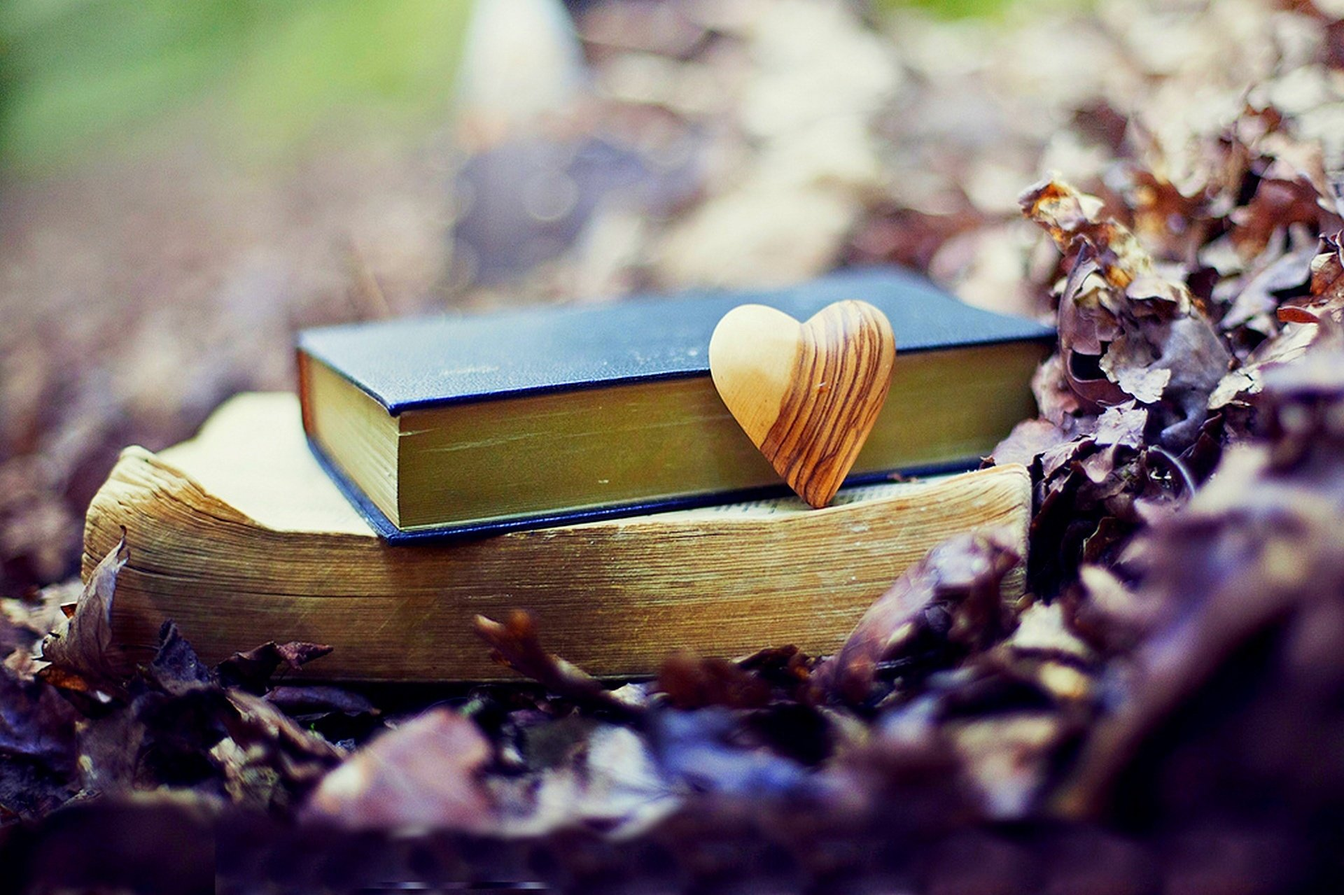old book leaves park heart love fall autumn bokeh mood wallpaper ...