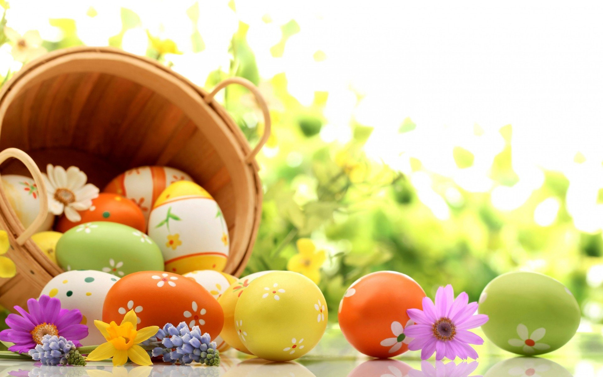 Colored Easter Eggs and Tiny Flowers HD Wallpaper Background 1920x1200