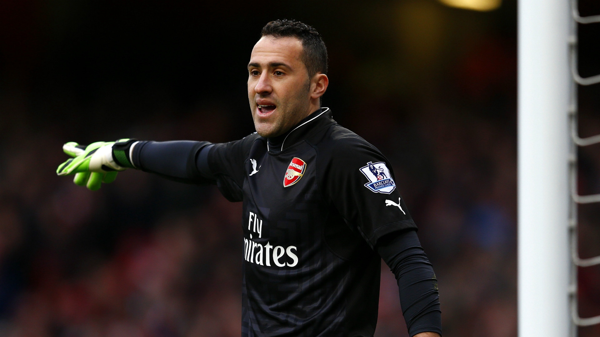 Download wallpaper 1920x1080 david ospina arsenal footballer hd 1920x1080