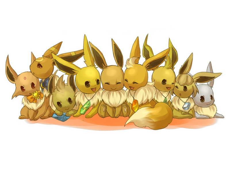 Description pokemon eevee Wallpaper 800x600