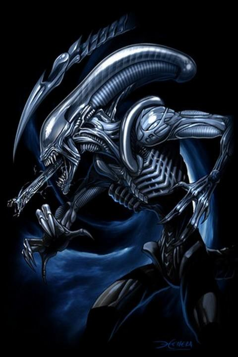 Alien HD Wallpaper FREE   Android Apps on Google Play 480x720