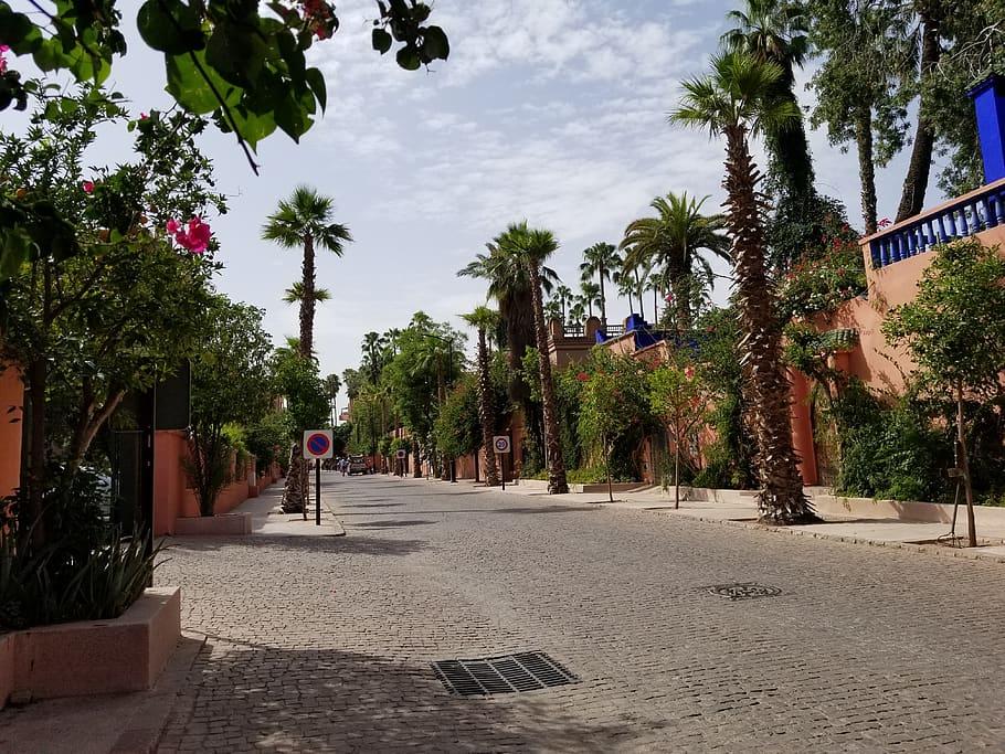HD wallpaper morocco marrakech rue yves st laurent marrakesh 910x683