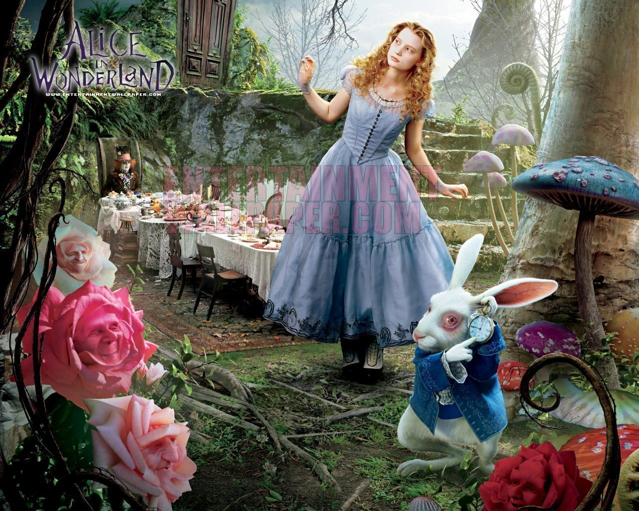 alice in wonderland coming of age Alice's adventures in wonderland is at heart a coming of age story in it, the innocent young alice ventures into wonderland, where she has a series of absurd, marvelous, and dangerous adventures these strange experiences cause her to lose some of her childish innocence author lewis carroll is well-known for his love of the absurd.