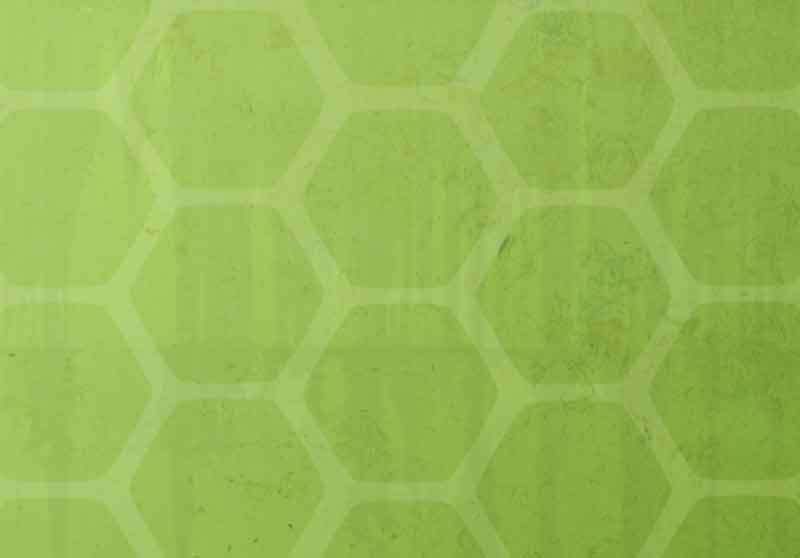 Back Gallery For Ninja Turtle Shell Pattern 800x558