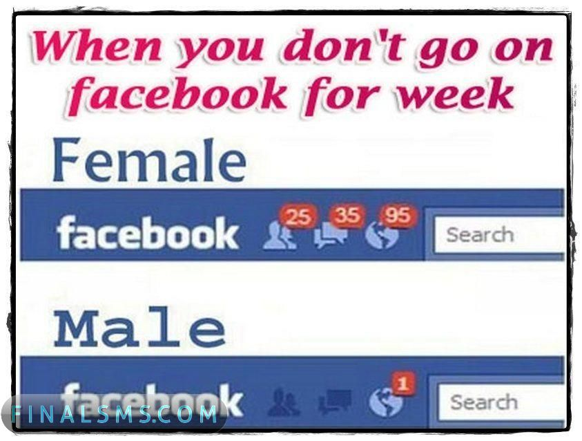 facebook funny wallpapers facebook funny pictures facebook funny 843x638