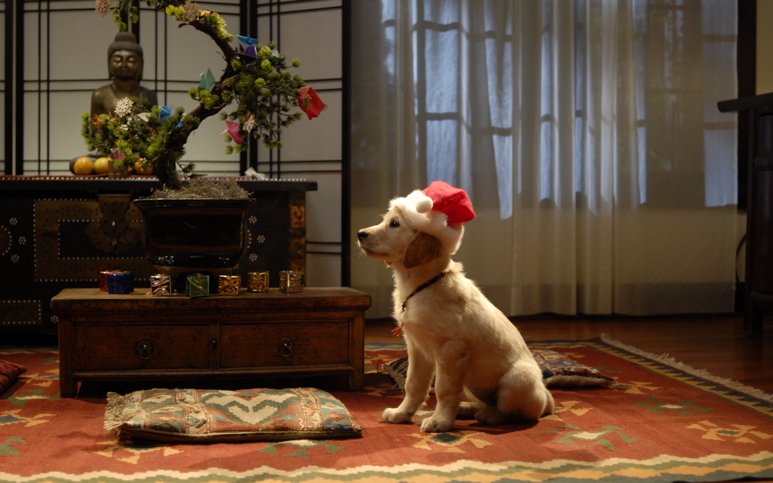 Обои Рабочего Стола Год Собаки