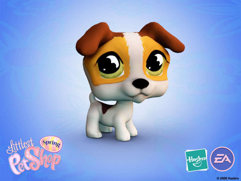 Littlest Pet Shop Club lps 800x600