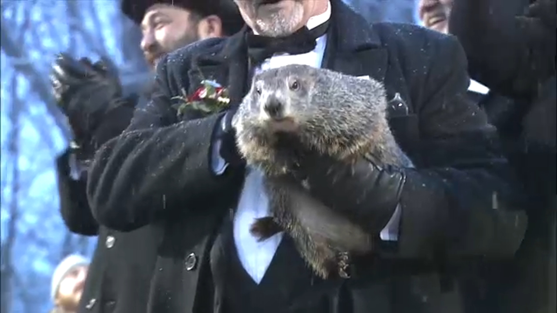 Groundhog Day 2020 Punxsutawney Phil predicts early spring 1920x1080