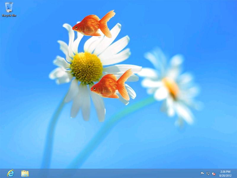 Live Goldfish Wallpaper | Desktop Wallpaper | Windows 8 Wallpaper ...