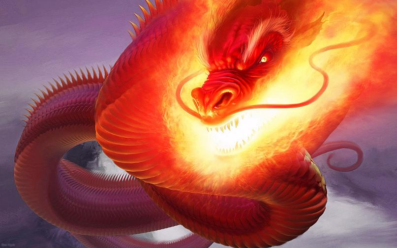Dragon Wallpaper for Smartphone 3d fire dragon wallpapers for 807x504