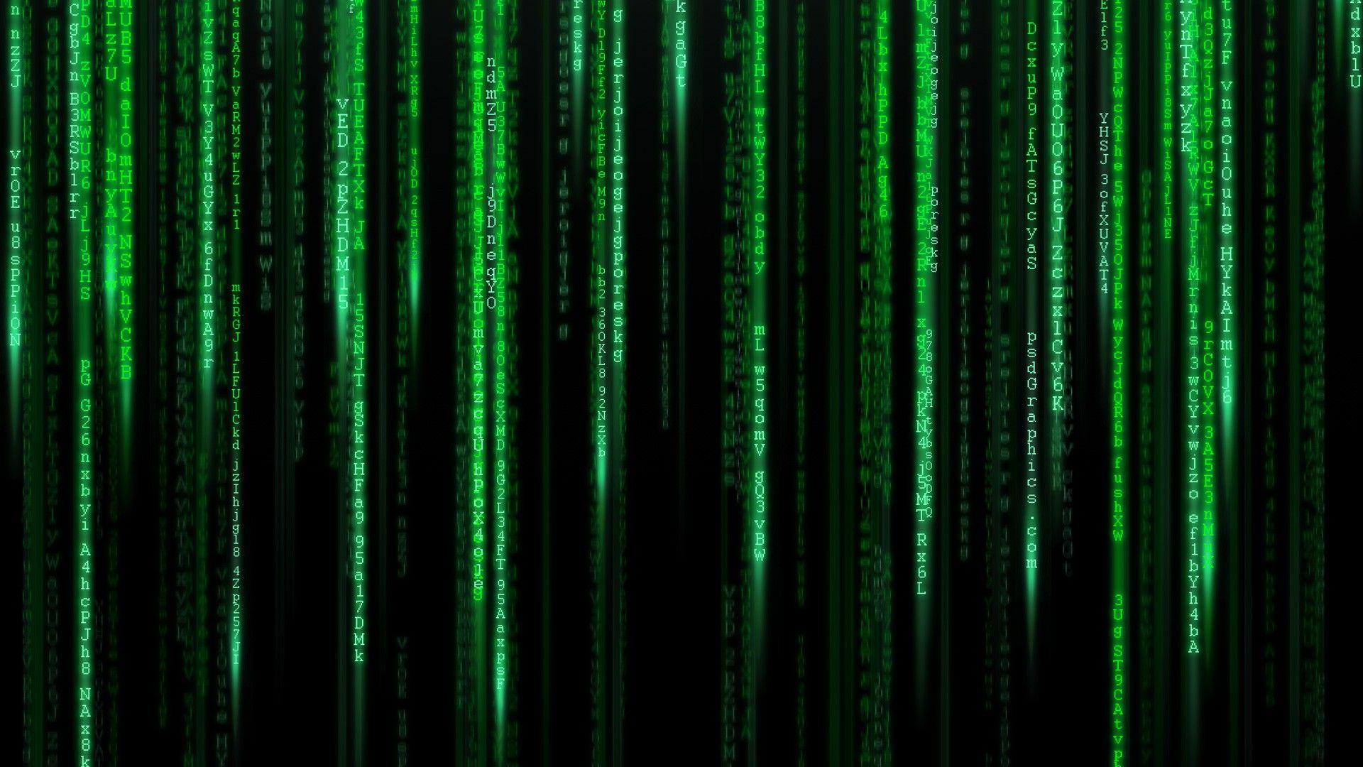 Matrix 1080p Background Picture Image 1920x1080