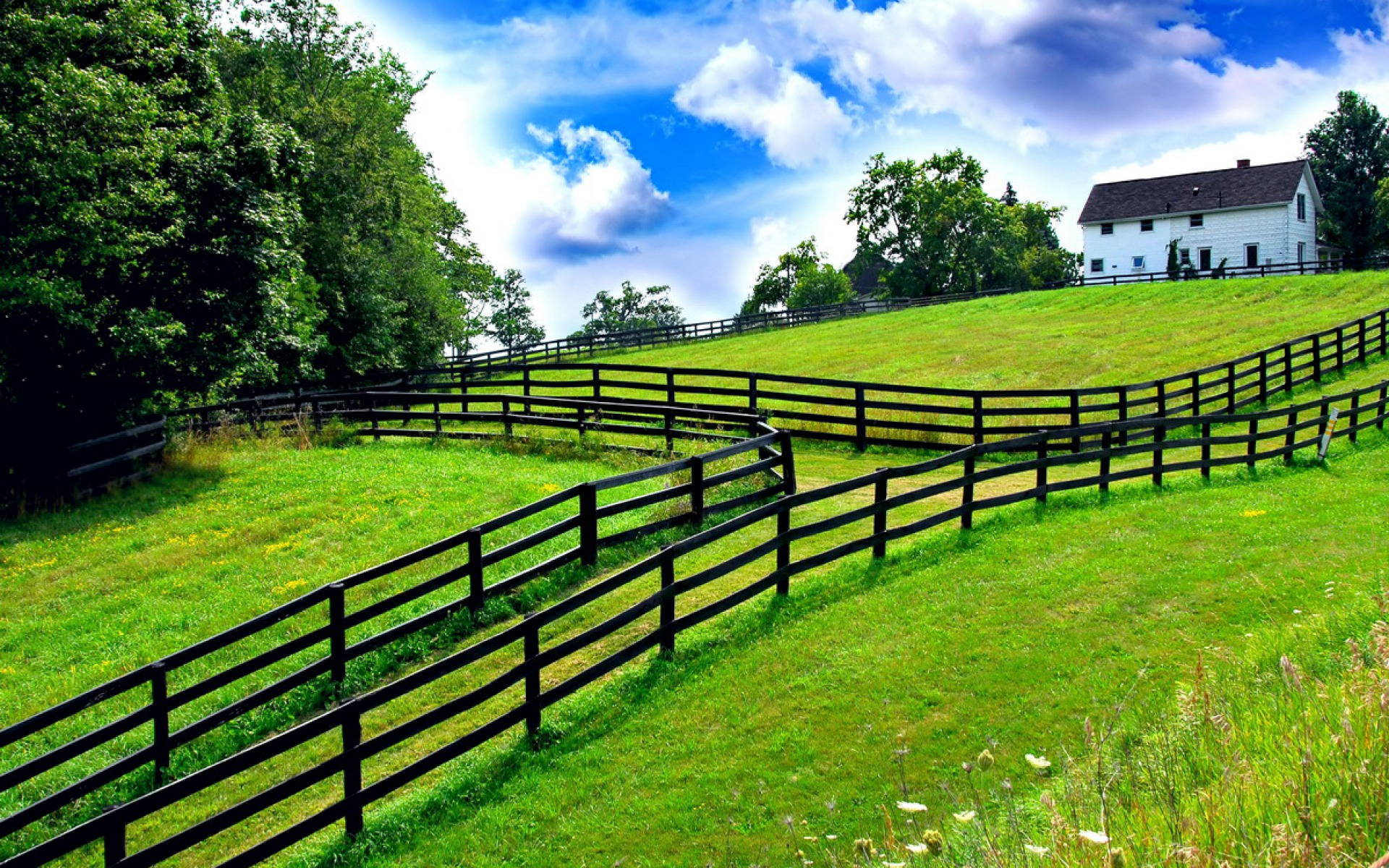 Summer Farm   3D and Abstract Wallpapers Best HD Wallpapers Photos 1920x1200