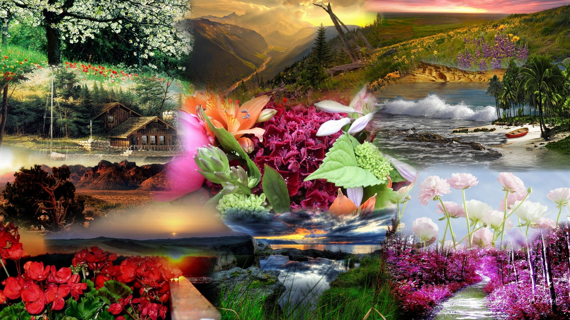 Most Beautiful Nature Widescreen High Definition Wallpaper For 1920x1080