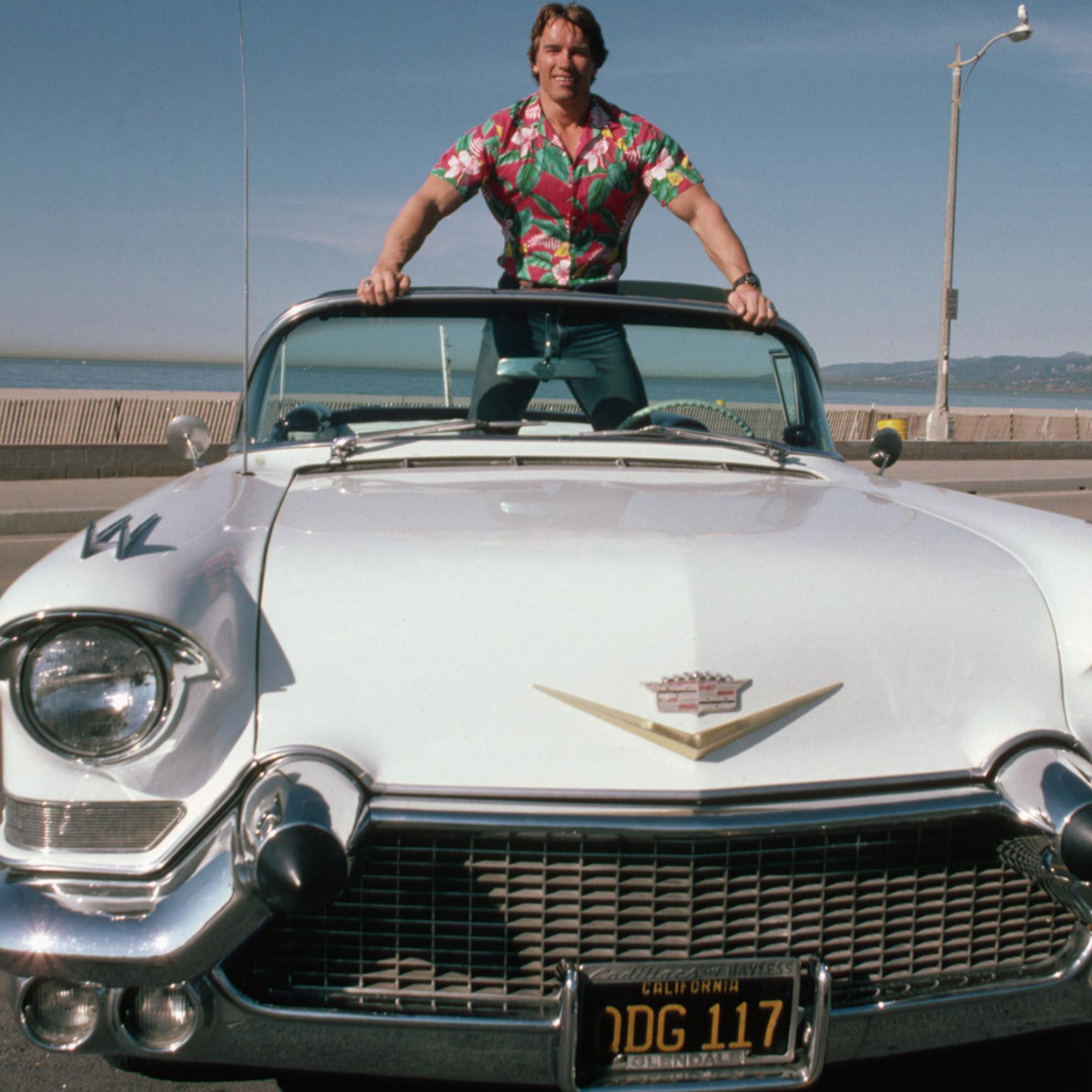 Download Arnold Schwarzenegger In Car Wallpapers Apple iPad Air 2780x2780