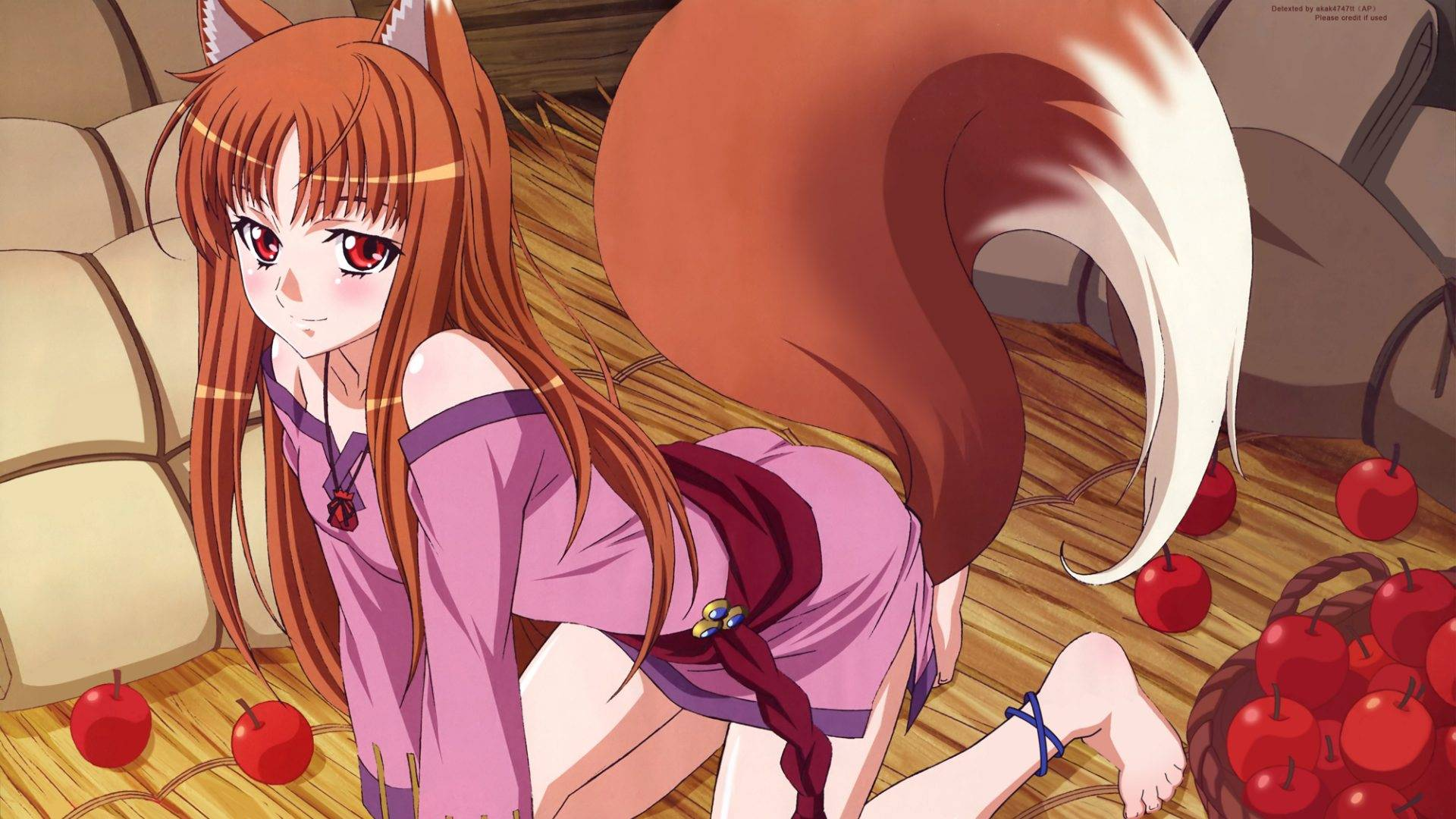 48 Holo Spice And Wolf Wallpaper On Wallpapersafari