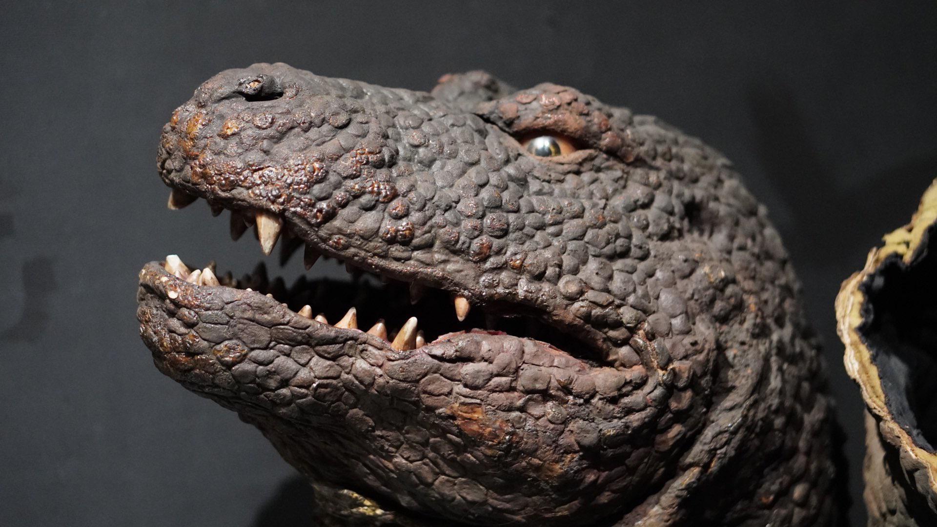 Original Godzillasaurus head GODZILLA 1920x1080
