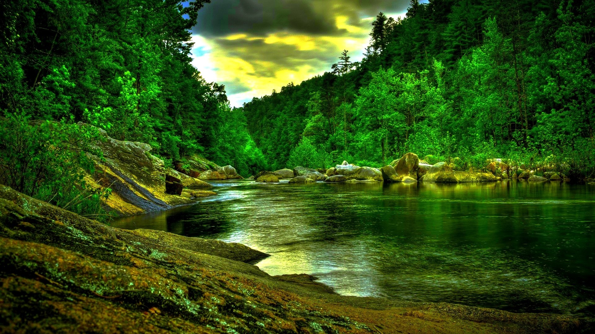 Download Beautiful Green Forest River Wide HD Wallpaper Search more 1920x1080