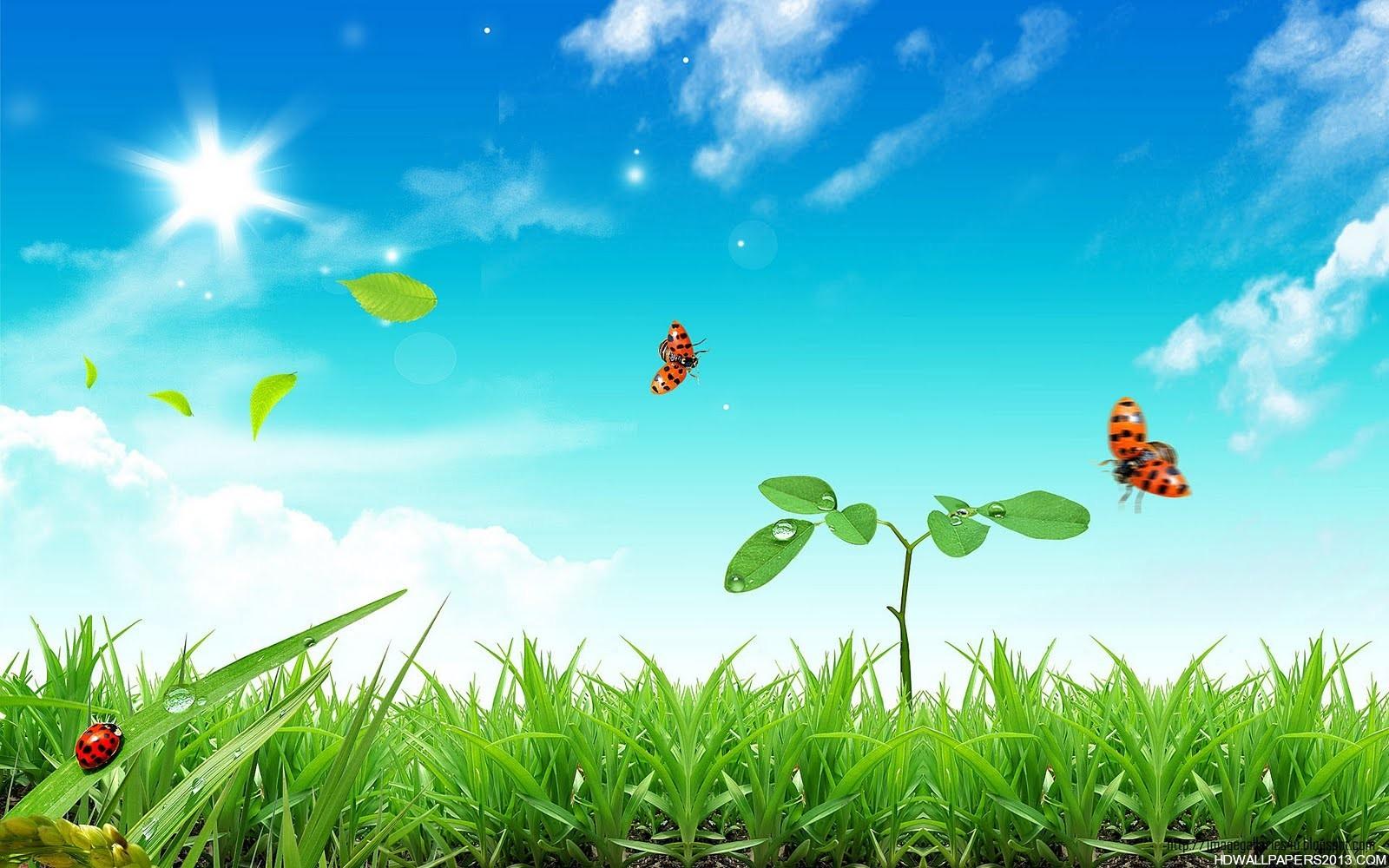 free spring desktop wallpaper   wwwwallpapers in hdcom 1600x1000