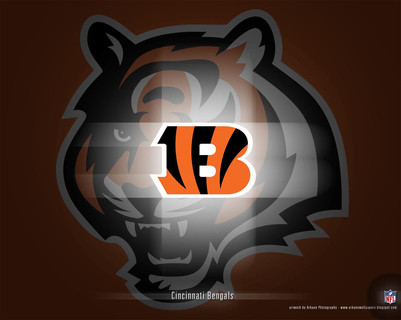 49+] Cincinnati Bengals Wallpaper and