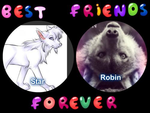 best friends forever   Animals Fan Art 33468994 500x375
