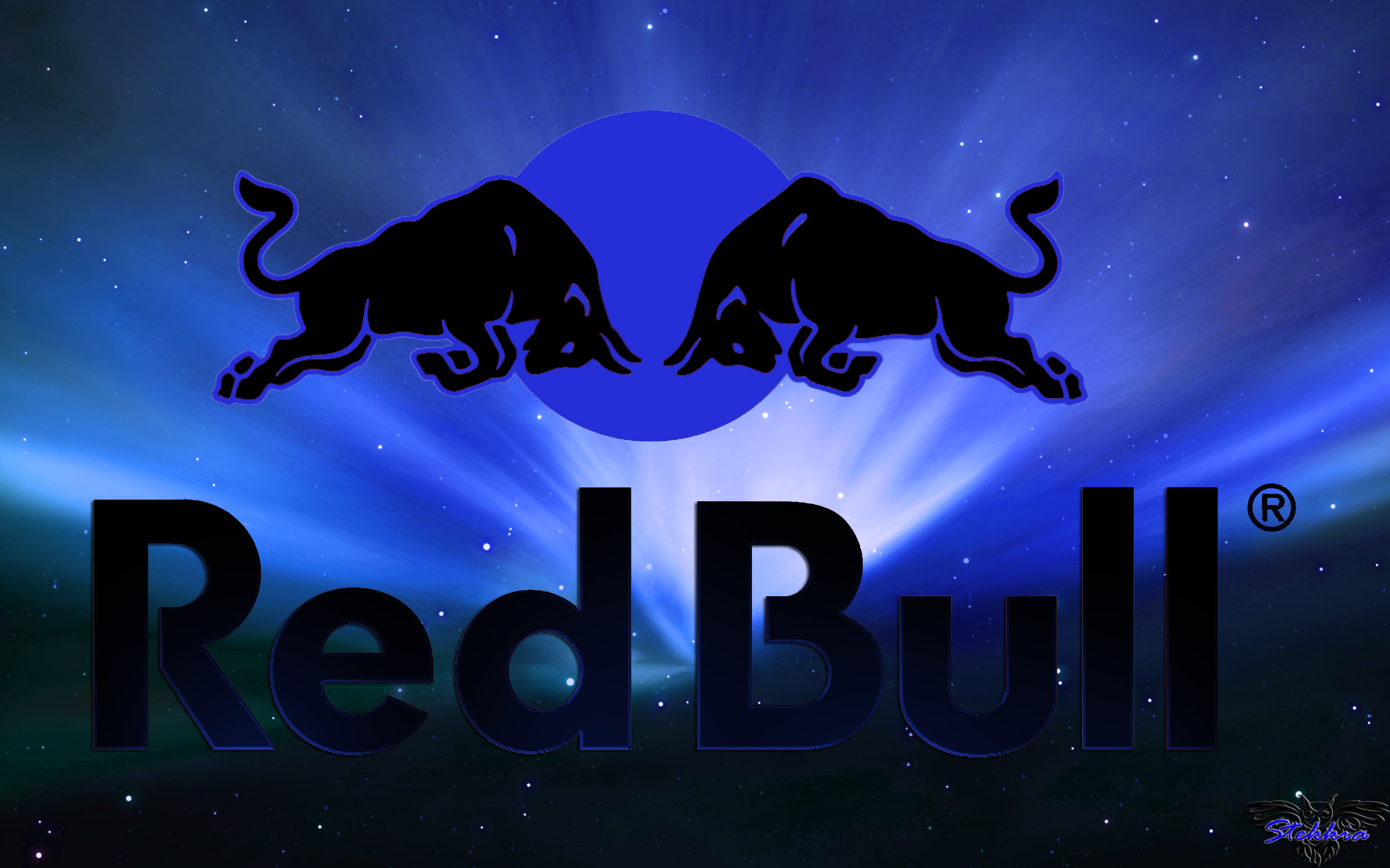 red bull Desktop and mobile wallpaper Wallippo 2560x1600