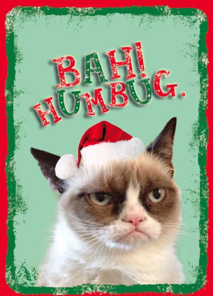 Imponk Blog Grumpy Cat Wallpaper Hd 422x586