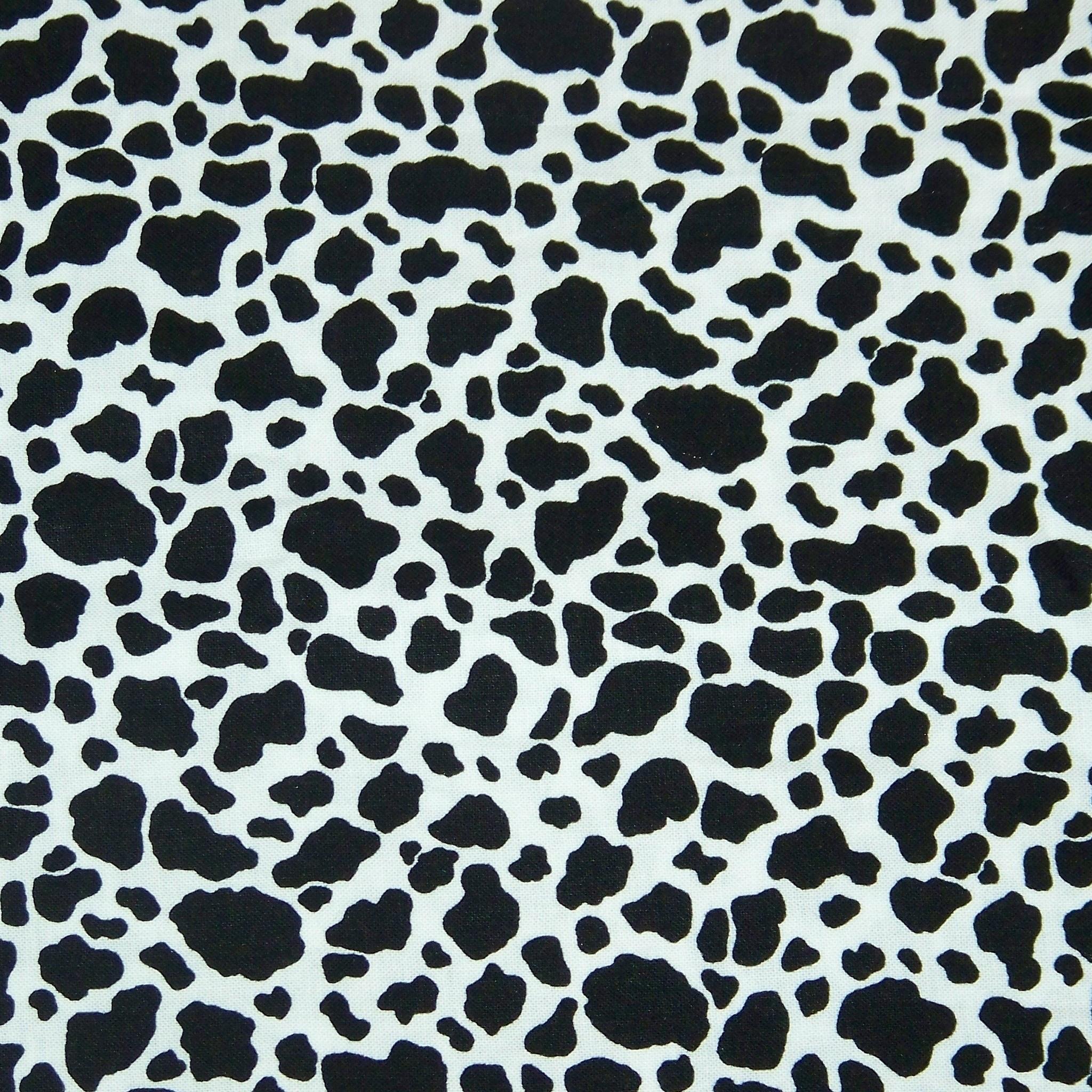 [49+] Cow Print Wallpaper on WallpaperSafari