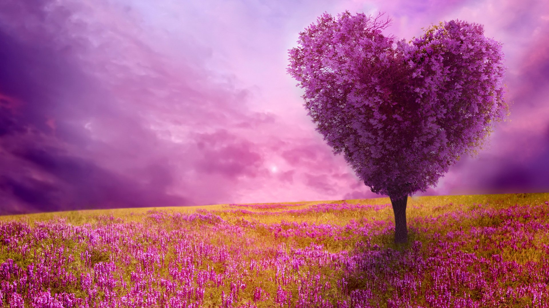 Spring nature background 1920x1080