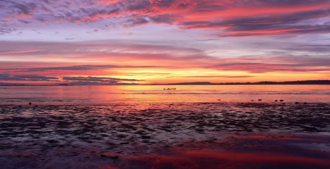 Pin Pink Beach Sunset Desktop Wallpaper 1093x560