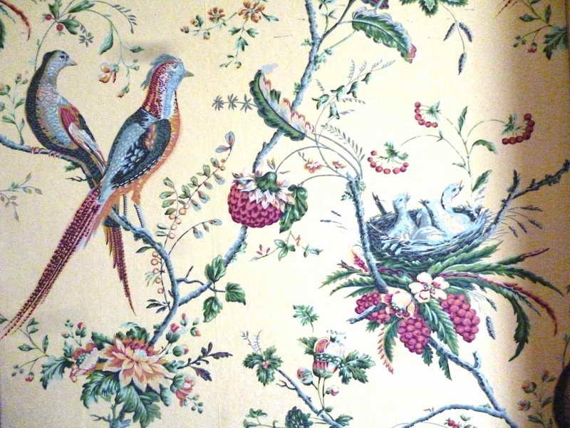 Bird Wallpaper For Walls Decor Beautiful Style Bird Wallpaper For 800x600