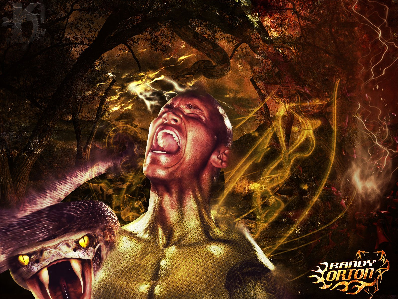 Randy Orton Logo Wallpaper Randy orton wallpaper 1600x1200